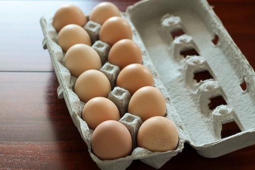 Eggs-2009.jpg