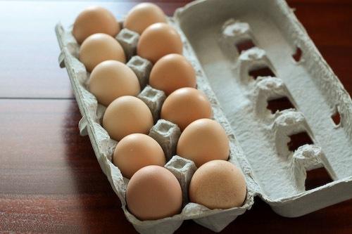 Eggs-2009.jpg