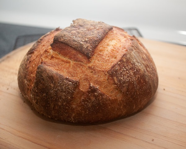sourdough-0627-600px.jpg