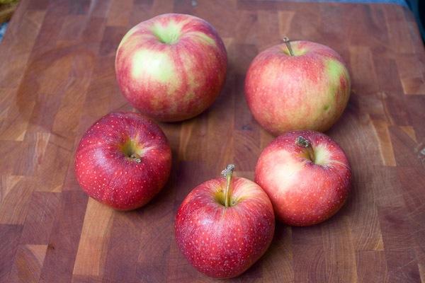 Apple-4099-600px.jpg